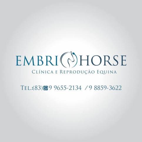 13706375_10207305070128149_164022534_n Embryo horse: Atendimento clínico em equinos e bovinos