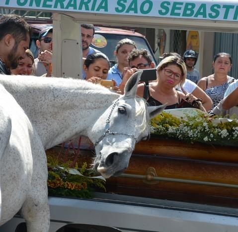 cavalo1-1 Cavalo se despede do dono morto em acidente e comove velório