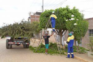 MOnteiro-Cidade-Bela_Poda-1-300x200 População de Monteiro recebeu mais um Cidade Bela na manhã desta quarta
