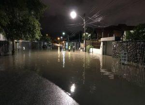 timthumb-28-300x218 Fortes chuvas derrubaram árvores e alagaram ruas em Campina Grande