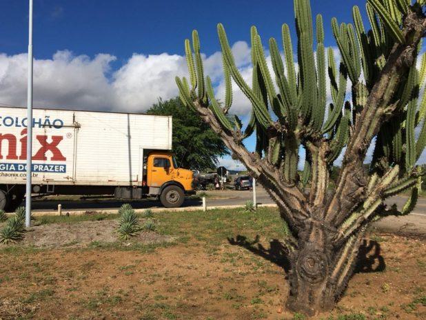 IMG-20180530-WA0099-1024x768 Em Monteiro: Caminhoneiros entram no 10º dia de paralisação contra alta de combustível