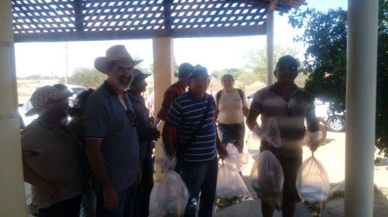 43695f02-7e7e-4211-831c-9f5f19a5cdfb-1024x575 EMATER Monteiro distribui 40.000 mil alevinos atendendo 100 Produtores Rurais da região.