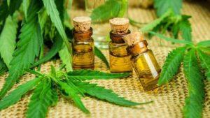 1535646822964-oleo-de-cannabis-620x349-300x169 Vereadores da Capital aprovam dia municipal da cannabis: 'precisamos dar visibilidade'