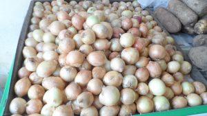 SAM_7007-300x169 Verdurão JK em Monteiro:  Frutas e verduras selecionadas diretamente da CEASA
