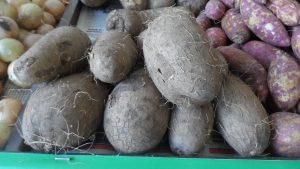 SAM_7010-Cópia-1-300x169 Verdurão JK em Monteiro:  Frutas e verduras selecionadas diretamente da CEASA