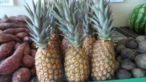 SAM_7012-Cópia-2-300x169 Verdurão JK em Monteiro:  Frutas e verduras selecionadas diretamente da CEASA
