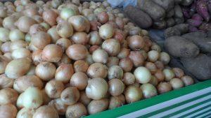 SAM_7016-1-300x169 Verdurão JK em Monteiro:  Frutas e verduras selecionadas diretamente da CEASA