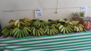 SAM_7029-300x169 Verdurão JK em Monteiro:  Frutas e verduras selecionadas diretamente da CEASA
