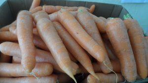 SAM_7032-300x169 Verdurão JK em Monteiro:  Frutas e verduras selecionadas diretamente da CEASA