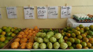 SAM_7042-1-300x169 Verdurão JK em Monteiro:  Frutas e verduras selecionadas diretamente da CEASA