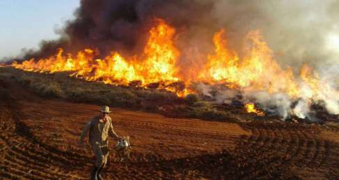 fogo-bombeiros-f1-700x372 Inundação, fogo e praga: Mudança climática causam desastres pelo mundo