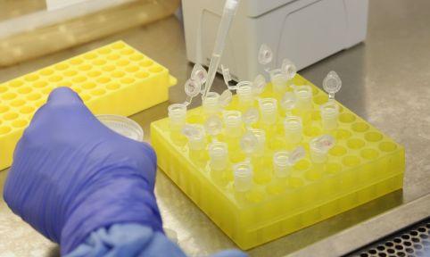 V-C-669x400 Registrada na França a primeira morte na Europa pelo novo coronavírus