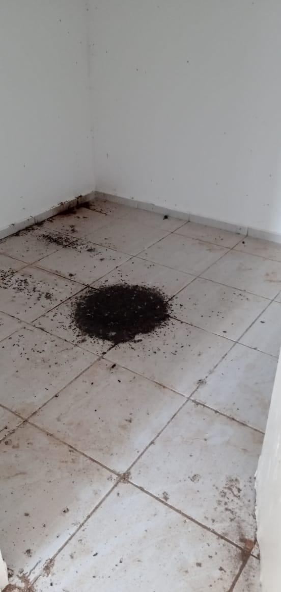 IMG-20200723-WA0199 ESCÂNDALO: Âncoras de Saúde são abandonadas pela gestão do prefeito Inácio Nóbrega de Amparo.