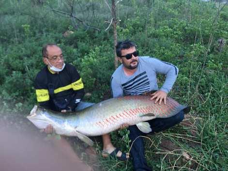 paulo-sergio-ze-ramos Pirarucu de 80 quilos é pescado na cidade de Monteiro no Cariri