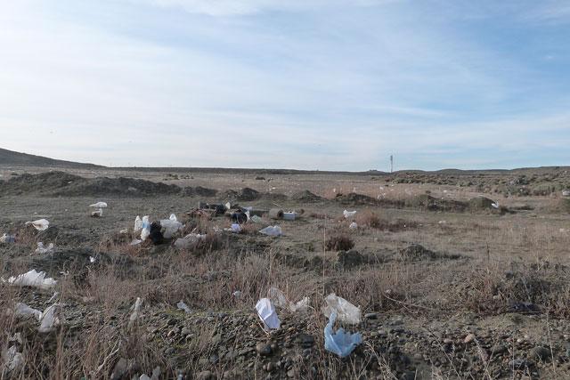 Terreno de 5 hectáreas donde funciona Hersun S.A. ¿Ud ve algo construido? – Foto: OPI Santa Cruz