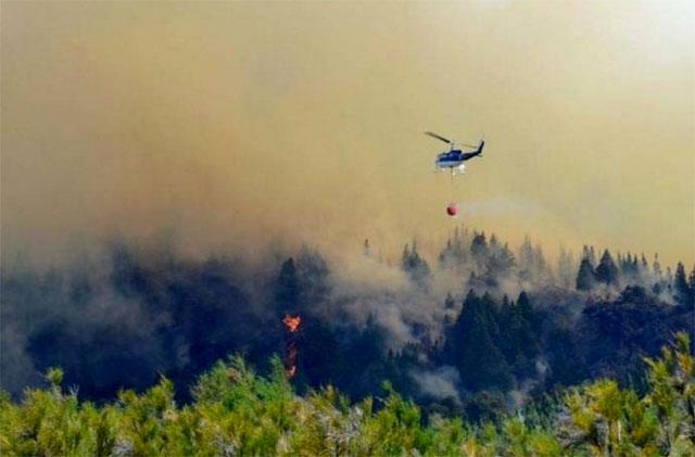 Incendio en el Parque Nacional Los Alerces: ya se quemaron mil hectáreas