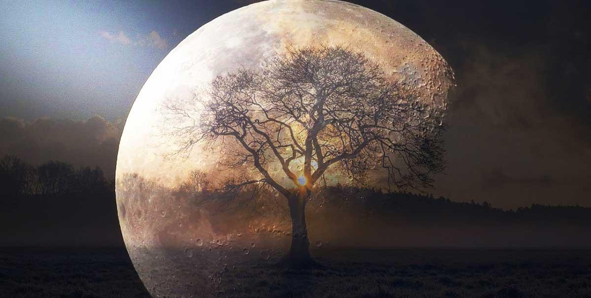 pământul către lună