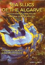 Sea Slugs of the Algarve