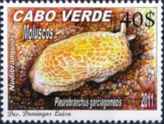stamp Cabo Verde 2011 - Pleurobranchus garciagomezi