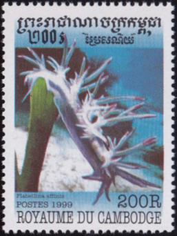stamp Royaume Du Cambodge 1999 - Flabelina affinis