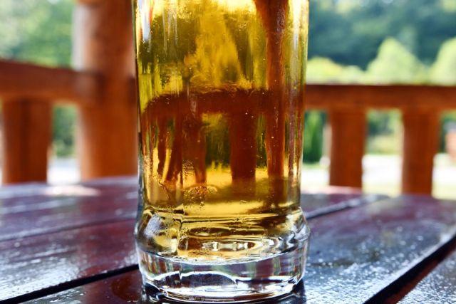pivo, ležiak, súťaž., degustácia, Heineken, Zlatý Bažant