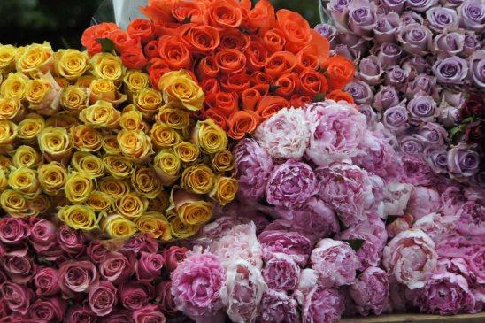 Blumenstände