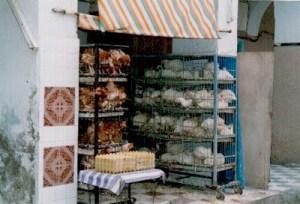 Hühner 1998 in Tunesien