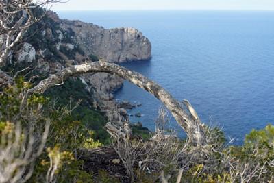 Ibiza: Wanderung entlang der Klippe