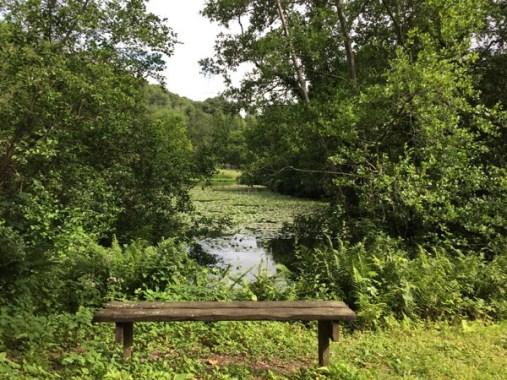 Im Park bei den Wasserfällen