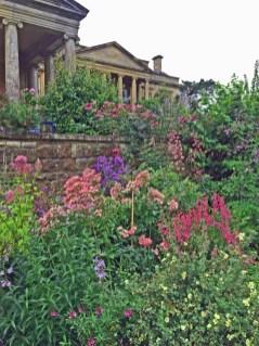 Blumen im englischen Garten