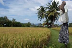 Touri-Spaß auf Langkawi
