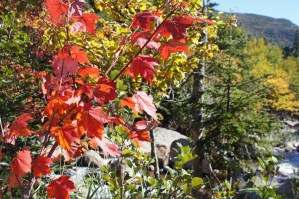 USA: Über den Kancamagus-Pass zum Lake Champlain