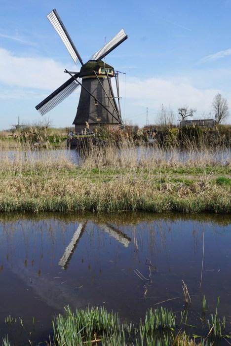 Mühle spiegelt sich