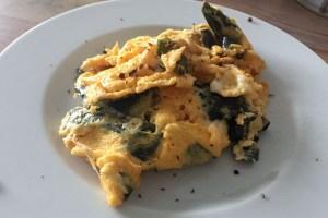 Ausprobiert: Seetang, der nach Speck schmecken soll