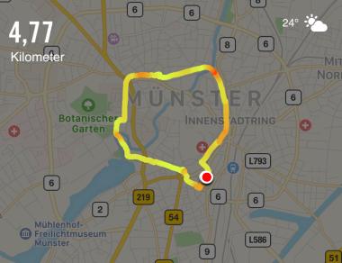 Laufen in Münster