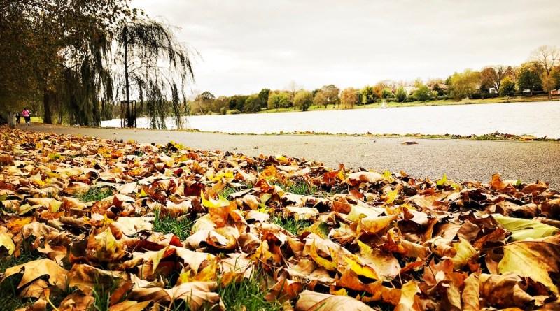 Es ist Herbst am Aasee