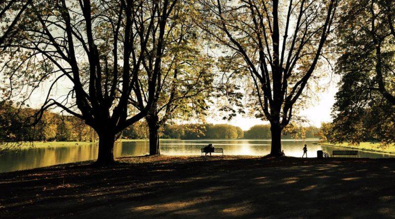 Sonne, Bäume und Wasser