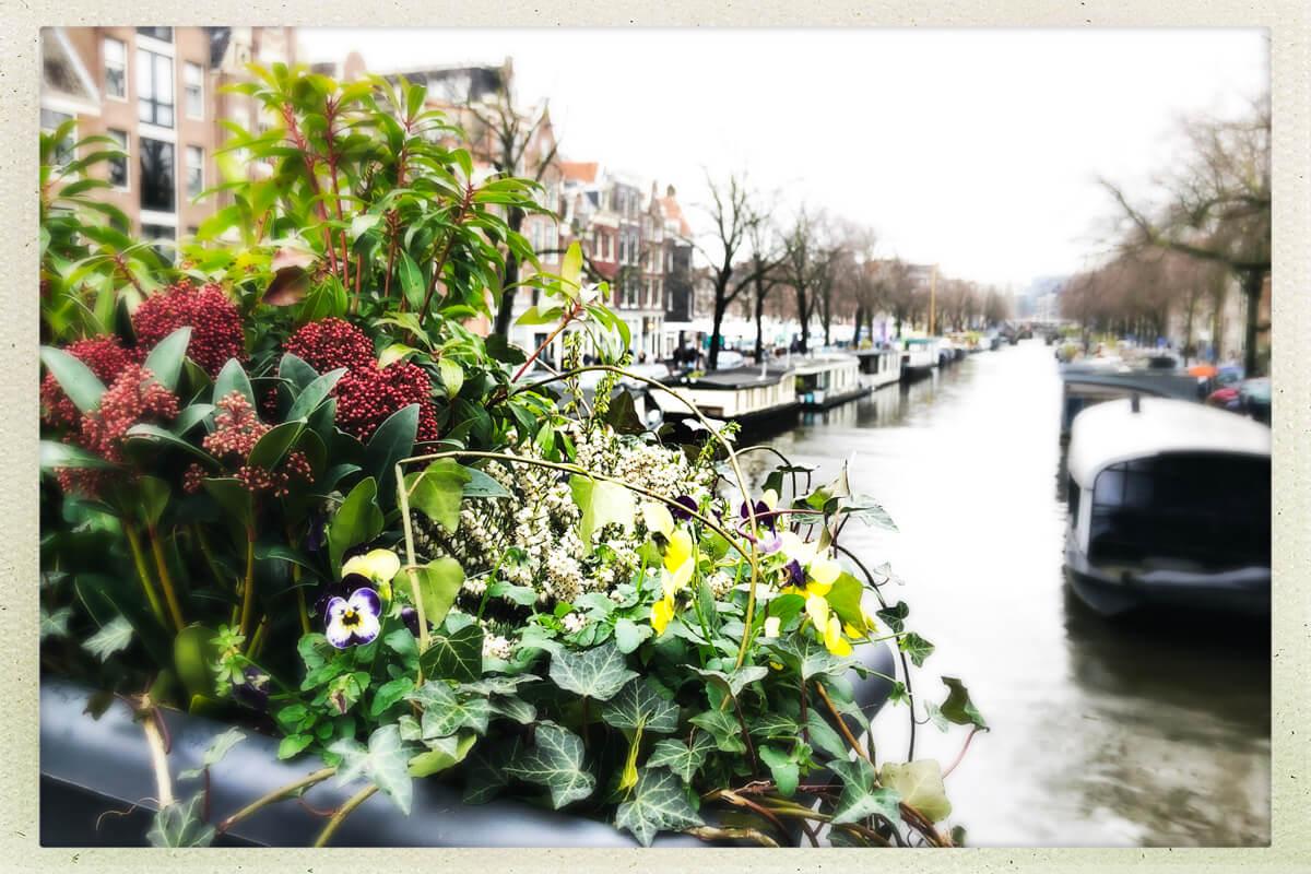 Städtetrip Amsterdam: Tulpen, Kirchen und noch viel mehr