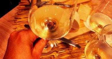 Weißwein und Käse - besser als gedacht