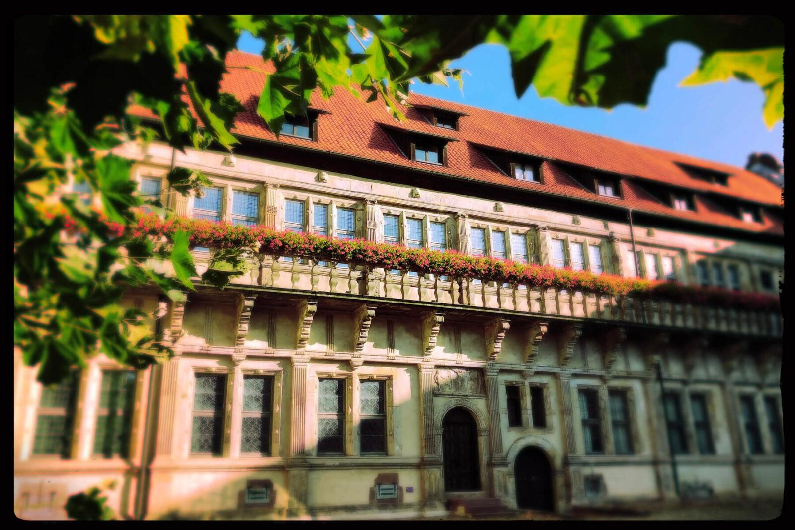 *Werbung* NRW: Die schönsten Museen im Teutoburger Wald