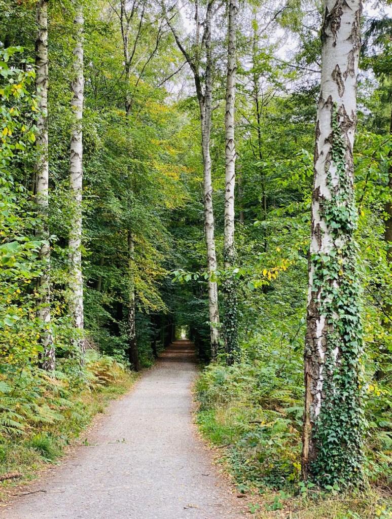 *Werbung* Herzebrock-Clarholz: Natur und Klöster entdecken