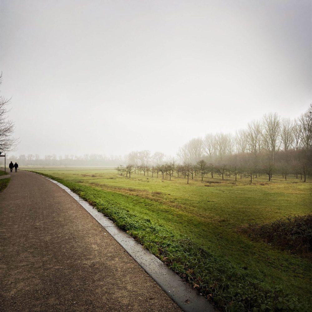 Stadtwandern in Köln-Flittard: Wo Natur auf Industrie stößt