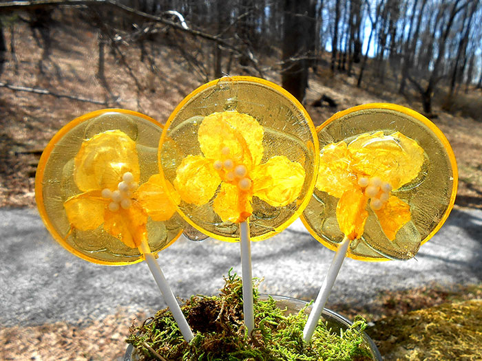 flower-lollipops-food-art-sugar-bakers-janet-best-11