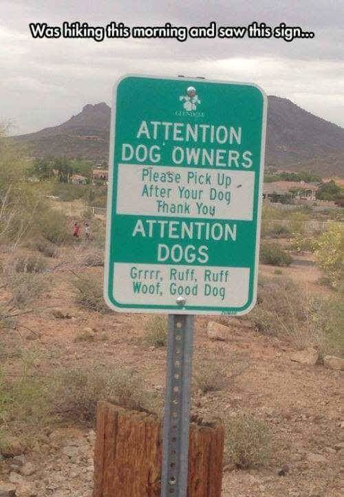 I didn't know they spoke canine around here.