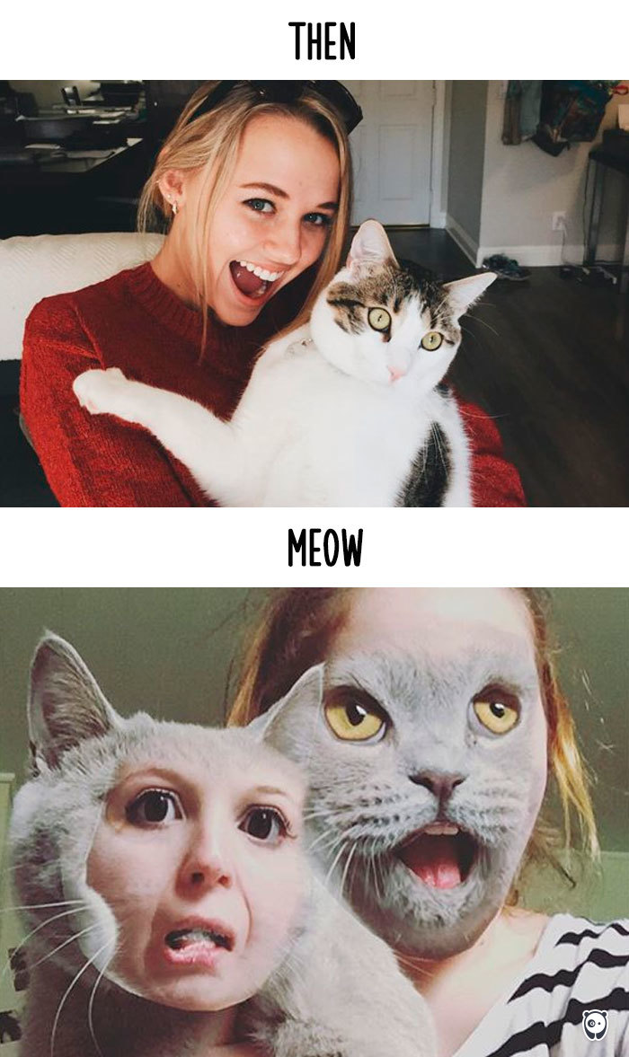 Taking Photos With My Hooman