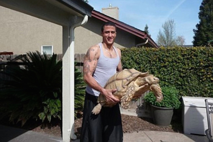 Sammy: 115 pound tortoise from California.