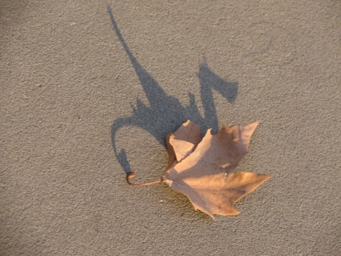 The most badass leaf.