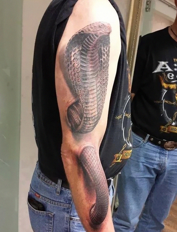 A cobra going in and out of the skin.