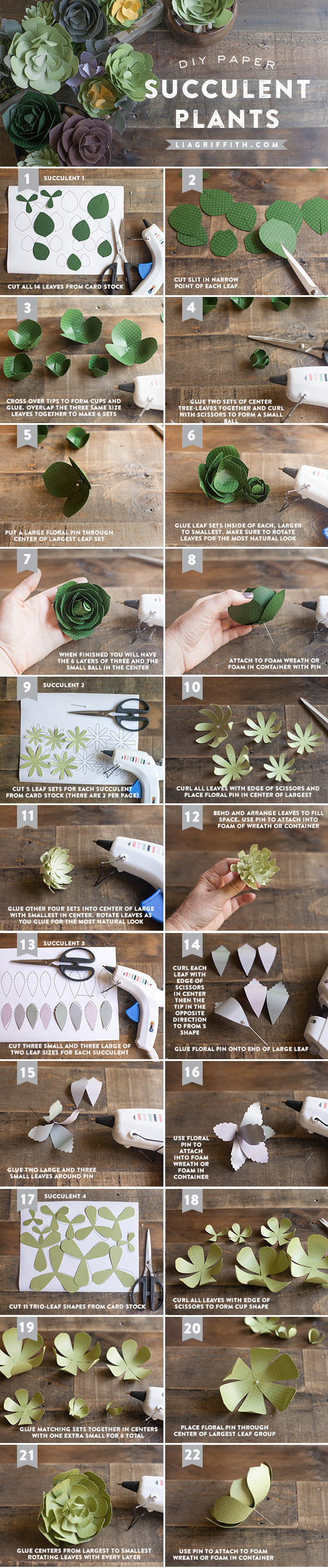 Make fake succulents out of paper to help you achieve the look without having to actually take care of the plants.