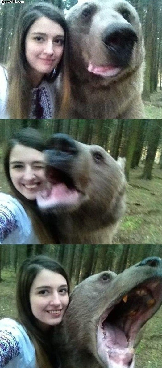 Selfies with a bear get the most likes.